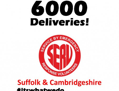 6000 Deliveries